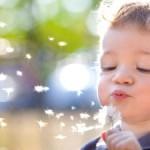 Buitenschoolse opvang en huiswerkbegeleiding - Les Petits